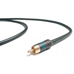 Những vấn đề cơ bản về dây tín hiệu âm thanh